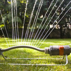 gardensprinkler1352391STOCKSNAP