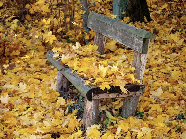 Herbstlaubkompostierung